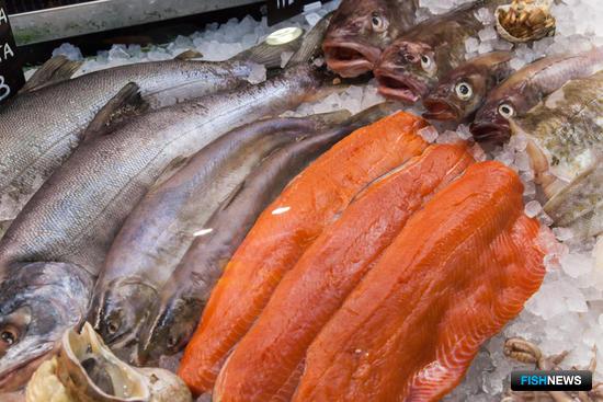 Рыба и морепродукты съехались на выставку со всех уголков мира