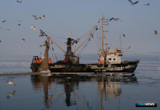 Какие изменения ждут рыбаков – новая версия