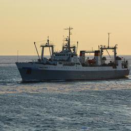 Камчатское судно на промысле. Фото компании «Океанрыбфлот»