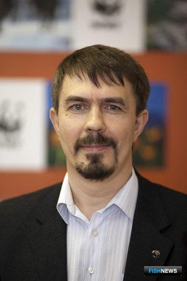 Александр МОИСЕЕВ, координатор проектов Морской программы WWF Россия