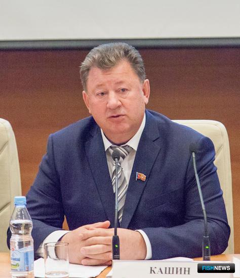 Председатель комитета ГД по природным ресурсам, природопользованию и экологии Владимир КАШИН