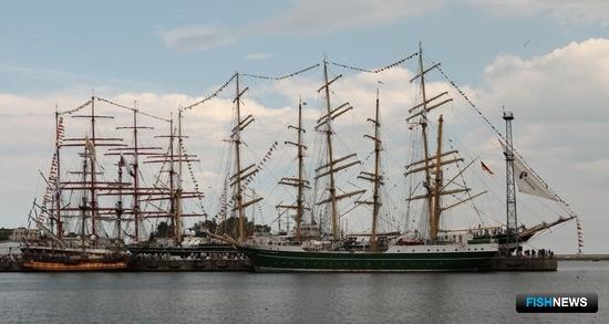 «Штандарт» и Alexander von Humboldt II добавили красок морскому фестивалю. Фото Александра Кучерука.