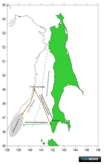 Суда, направляющиеся из порта Невельск в район промысла – подзону Приморье, могли бы проходить не более 100 миль, но вынуждены выбирать путь длиной в 380 миль