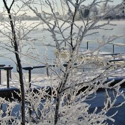 Гостям продемонстрировали ряд водных объектов на территории Юго-Восточной Финляндии. Фото пресс-службы регионального комитета по агропромышленному и рыбохозяйственному комплексу