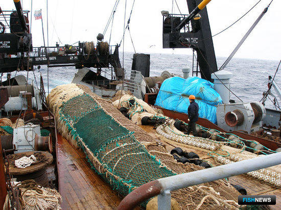 Приморские рыбаки активно осваивают квоты