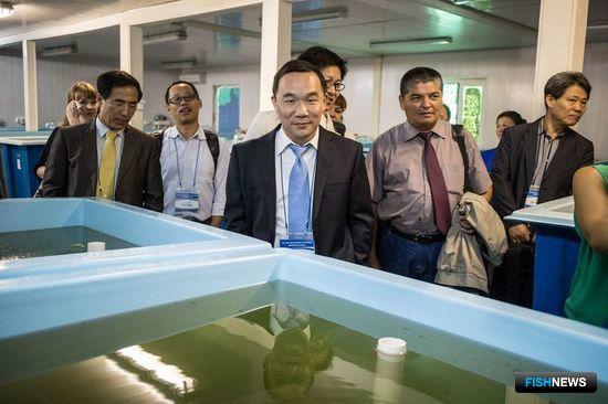 Участники AMFUF посетили заводы по культивированию и производству дальневосточного трепанга. Фото информационно-аналитического отдела Дальрыбвтуза.