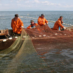 Сахалинцы поддержали Всероссийский съезд рыбаков