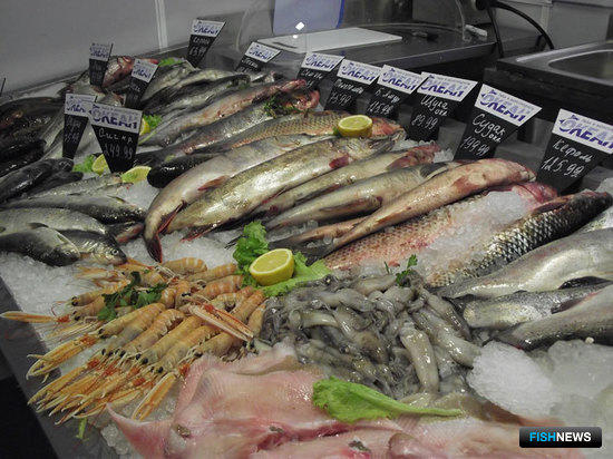 Открытие специализированного магазина «Океан» в Санкт-Петербурге