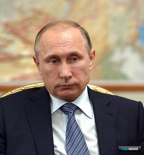 Президент РФ Владимир ПУТИН Фото пресс-службы Кремля