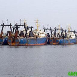 В калининградском порту задержаны браконьерские суда из «черного списка» ЕС
