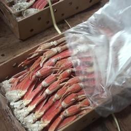 В морозильном трюме пограничники нашли около 22 тонн конечностей краба-стригуна опилио. Фото пресс-службы ПУ ФСБ России по Сахалинской области