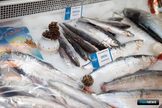 Еще одной особенностью нынешнего года стала растущая популярность сибирской рыбы