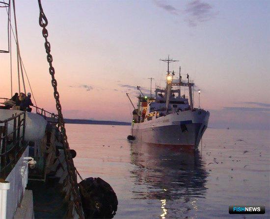 Руководство Группы компаний «Русское море» заявило о планах в ближайшие годы занять 20-30% российского рынка добычи водных биоресурсов и стать самым крупным в мире рыбным холдингом.