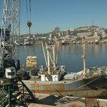 Государство ищет пути адекватной оценки рыбопродукции