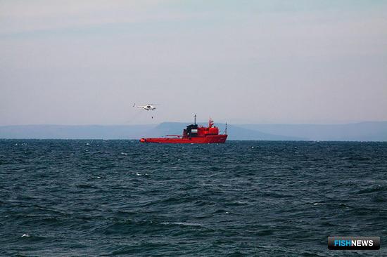 Спасатели тренировались в оказании помощи пострадавшим и ликвидации разлива нефти. Фото ФГБУ «Администрация морских портов Приморского края и Восточной Арктики»