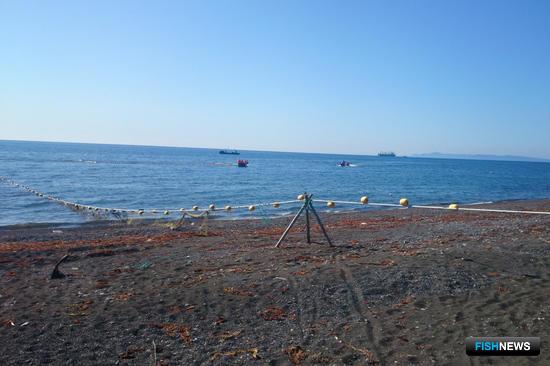 Любительская рыбалка: перезагрузка
