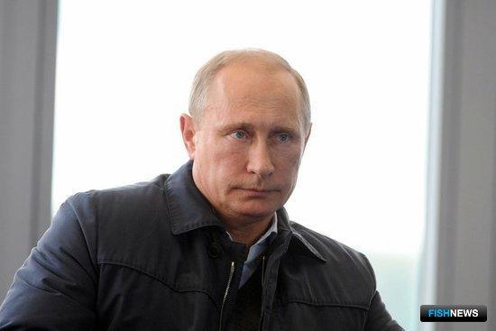 Президент РФ Владимир ПУТИН. Фото пресс-службы Кремля