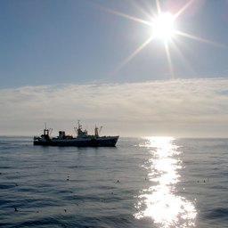 КОНЦЕПЦИЯ проекта Федерального закона «Об Охотском море»