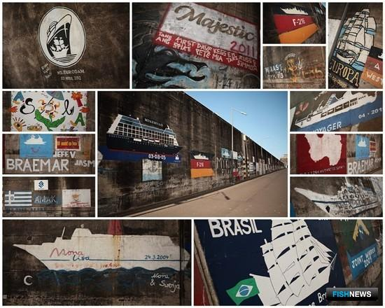 Портовые граффити Фуншала. Фото Александра Кучерука.