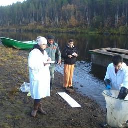 Студенты оценивали качество лососевых производителей. Фото пресс-центра МГТУ