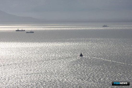 Рыбакам дали полгода на замену «Аргоса»
