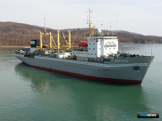 Плавзавод «Залив Восток». Фото пресс-службы ГК «Доброфлот»