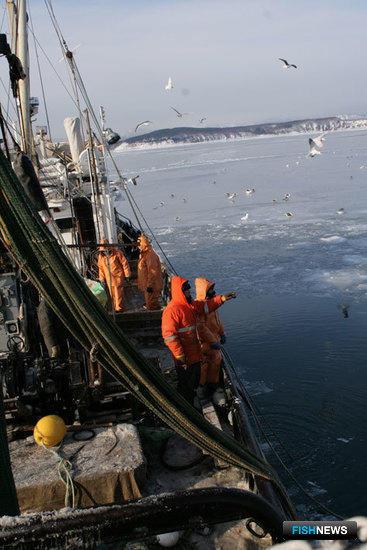 Сахалинская рыба меняет формат