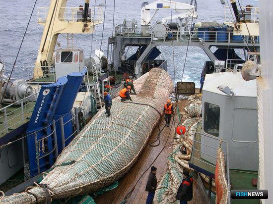 Рыбакам необходима поддержка власти