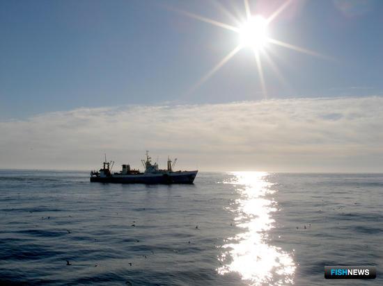 «Гонец» на службе рыбопромыслового флота