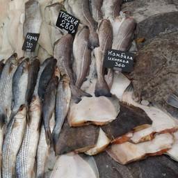 ФНС рассказала рыбникам о новых подходах