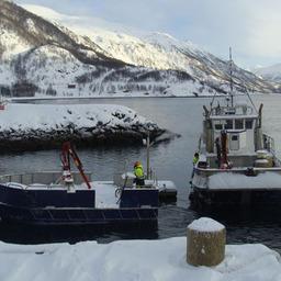 О состоянии и тенденциях развития рыбопромыслового флота и промыслового судостроения за рубежом