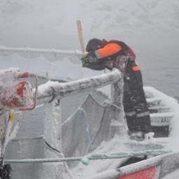 Борьба со льдом на садках. Фото предоставлено ФГБУ «Северный ЭО АСР»