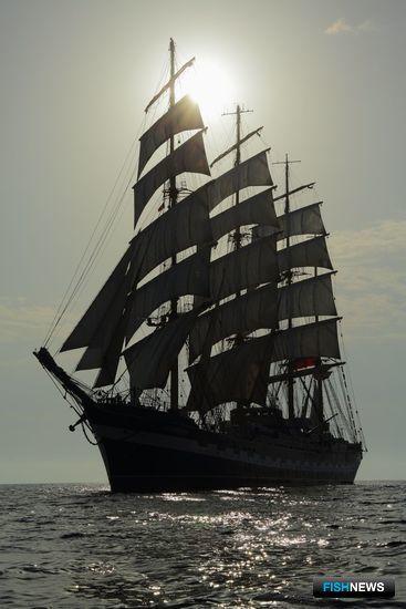 «Крузенштерн» снова выйдет в море 23 мая. Фото пресс-службы БГАРФ