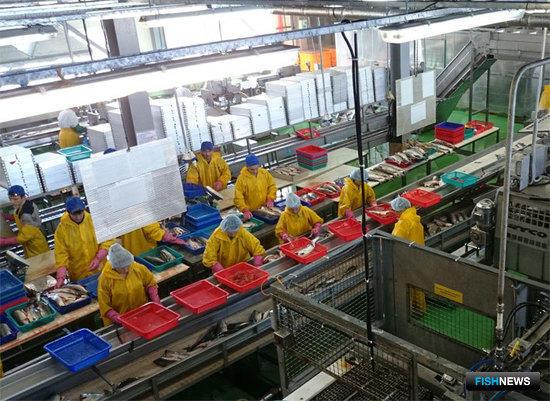 РСПП помог спасти отечественную рыбопереработку