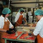 Белоруссия высказалась по проекту «рыбного» техрегламента