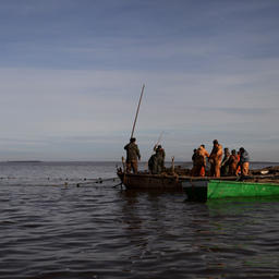 Лов рыбы на озере Ильмень