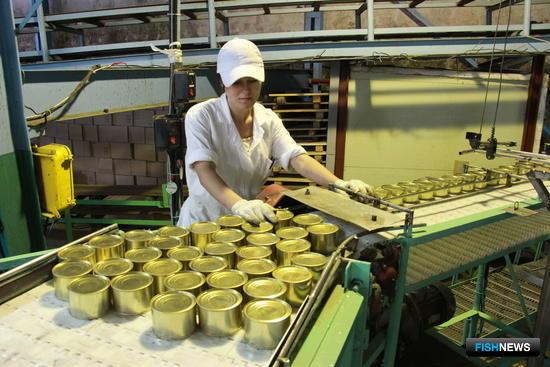 За две недели работы Рыбокомбинат «Островной» выпустил более 500 тыс. банок сайровых консервов. Фото пресс-службы ООО «Курильский универсальный комплекс»