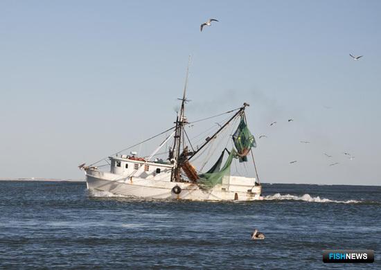 Задача «прибрежки» – накормить население рыбой