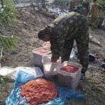 Пресечена деятельность подпольного икорного цеха. Фото предоставлены УВД по Сахалинской области.