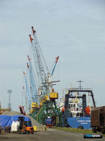 В Калининградском морском рыбном порту