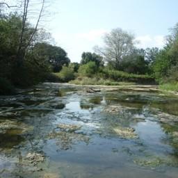 Эвтрофикация реки Хадажка. Фото пресс-службы института