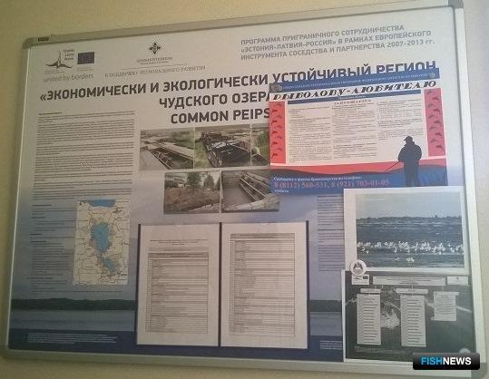 Плакаты «Рыболову-любителю» разработаны и распространяются в рамках проекта социальной рекламы СЗТУ. Фото пресс-службы Северо-Западного теруправления Росрыболовства.
