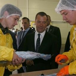 Премьер-министр Дмитрий МЕДВЕДЕВ на Сахалине. Фото пресс-службы правительства РФ