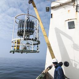 Специалисты выполнили океанологическую съемку, взяли пробы воды и грунта для химических исследований, собрали образцы зоо-, ихтиопланктона и бентоса. Фото пресс-службы АтлантНИРО