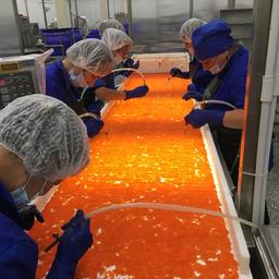 Основным достижением в компании «Технологическое оборудование» считают создание на основе собственного опыта концепции рыбоперерабатывающего предприятия замкнутого цикла