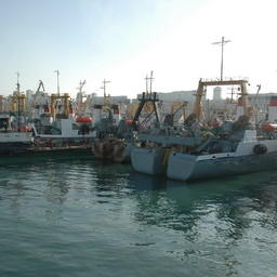 Рыбацкие суда у причала во Владивостоке