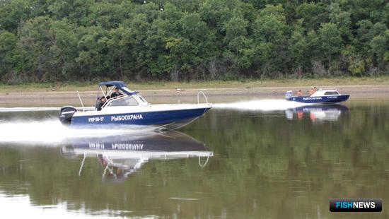 Рейды осуществлялись на рыбоохранных судах, быстроходных катерах и автотранспорте. Фото пресс-службы Амурского теруправления Росрыболовства.