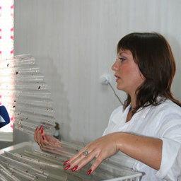 Высадка мальков трепанга. Приморский край, Хасанский район, сентябрь, 2006 г.