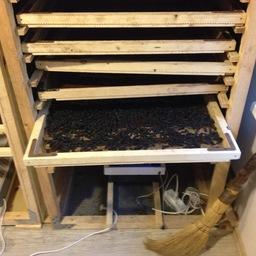 Цех по переработке трепанга размещался в обычной двухкомнатной квартире типовой пятиэтажки. Фото пресс-группы погрануправления ФСБ России по Приморскому краю