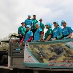 Ребята Кыринской школы на акции «Чистой  реке – чистые берега». Фото пресс-службы WWF